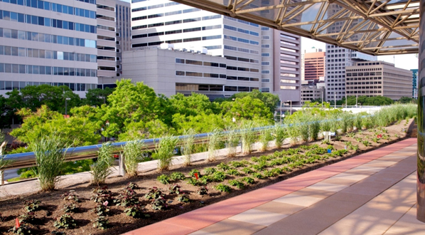 Photo The Baltimore Convention Center completed a 27,000 square foot green roof in 2010