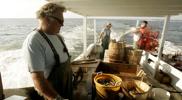 Photo Watermen aboard the commercial crabbing boat 'Foxy Roxy', Chesapeake Beach