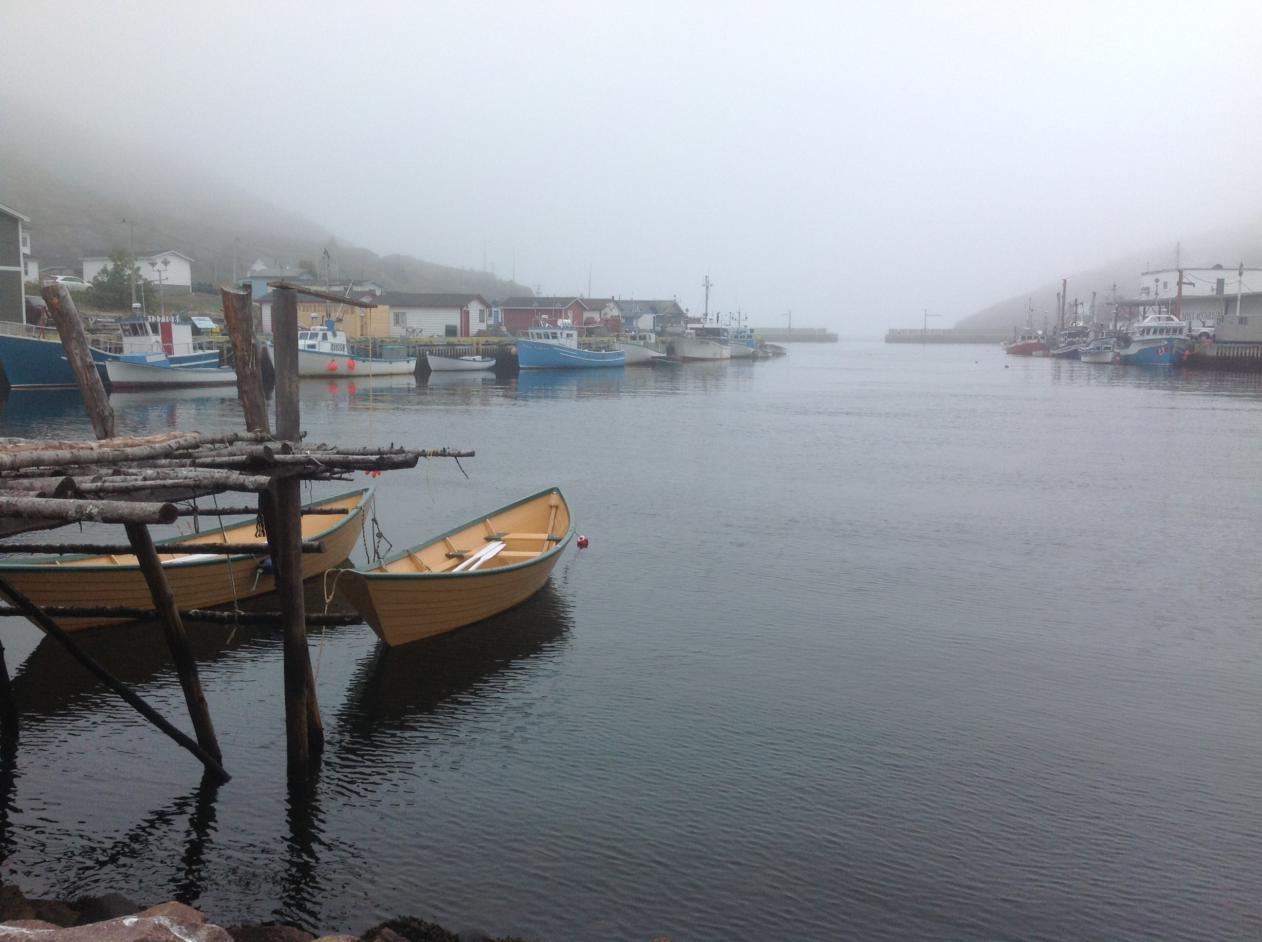 Photo Celebrate the Protected Fishing Area of Petty Harbour-Maddox Cove
