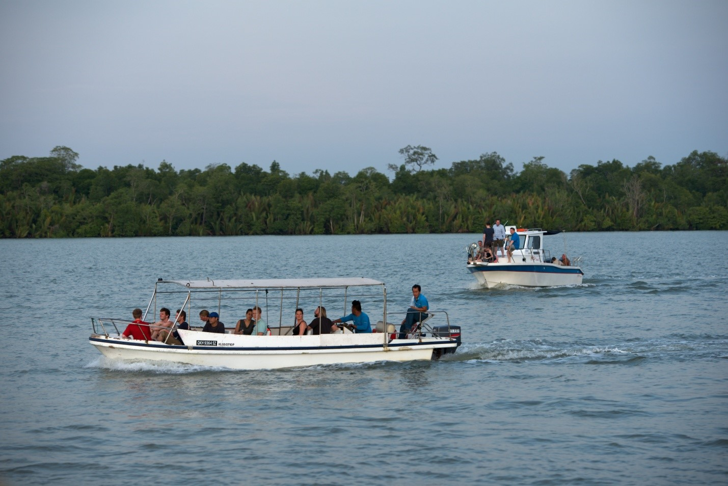Photo Take a boat tour to see the dolphins and saltwater crocodiles.