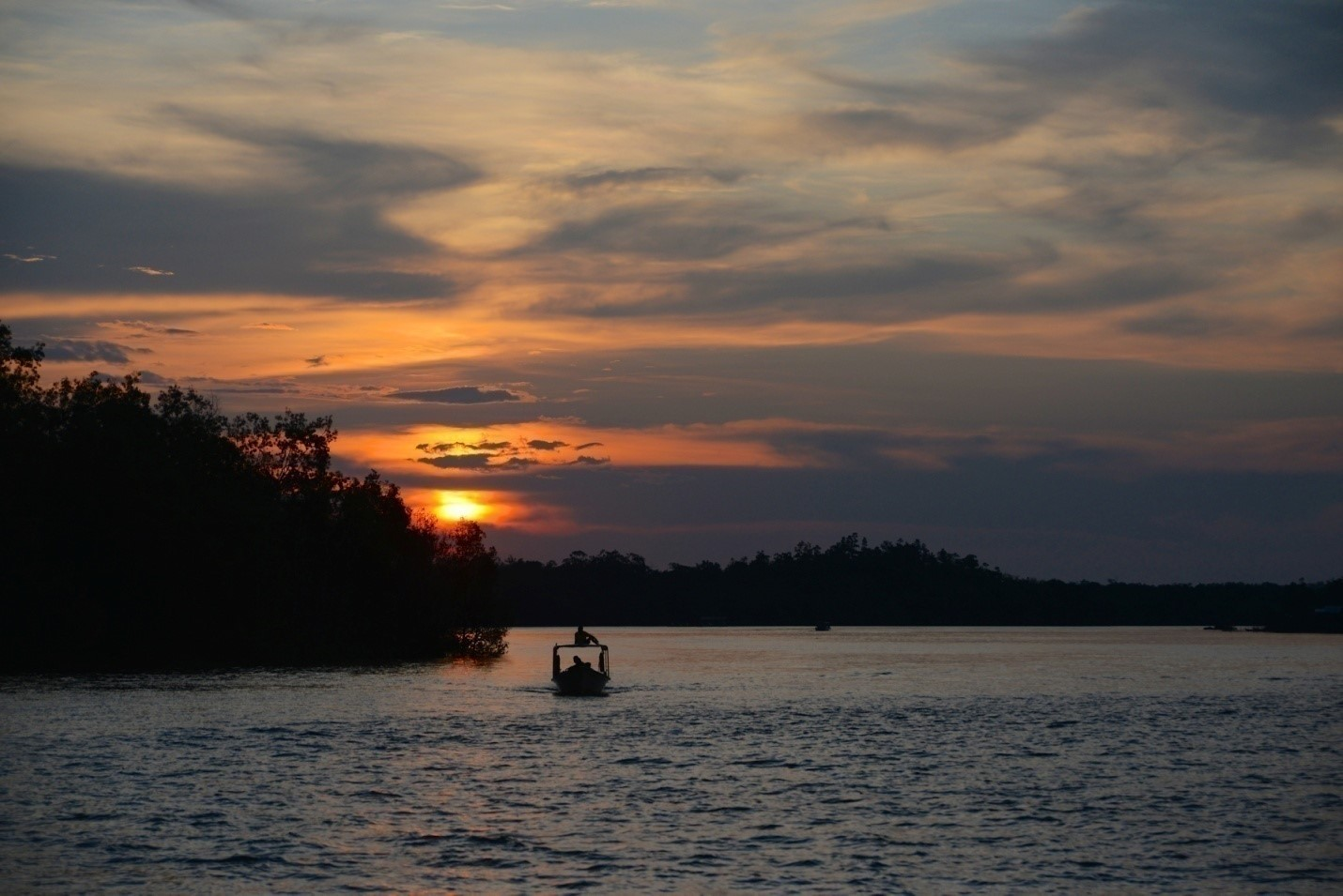 Photo The evening boat tour boasts fantastic wildlife!