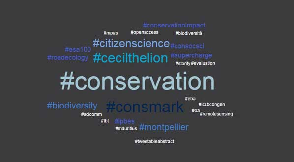 Photo There were more than 20,000 tweets about #ICCB2015. These were the most used hashtags