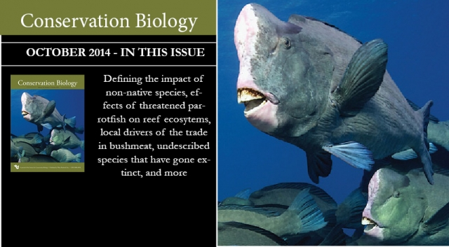 Find 30+ papers and 71 questions for marine conservation in the Oct. issue of Conservation Biology