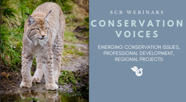 New SCB Webinar Series: Conservation Voices