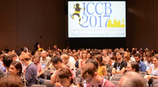 ICCB Sustainability Report: 100 percent of carbon emissions from ICCB offset