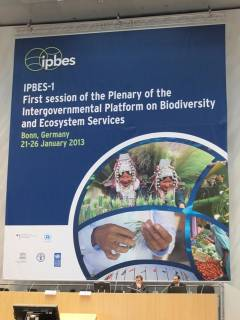 photo for SCB Sends Delegation to IPBES