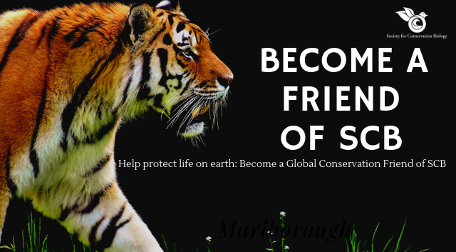 Become a Global Conservation Friend of SCB